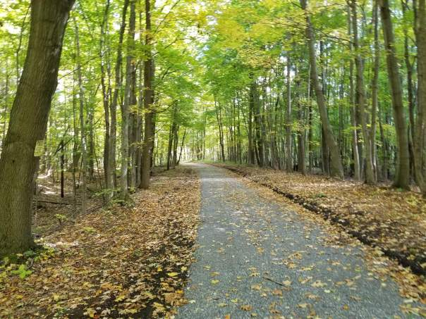Webb Trail